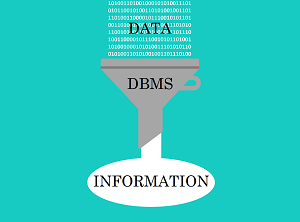 A funnel showing data processed by a DBMS coming out as information.